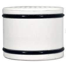 Paragon Ersatz-Duschfilter